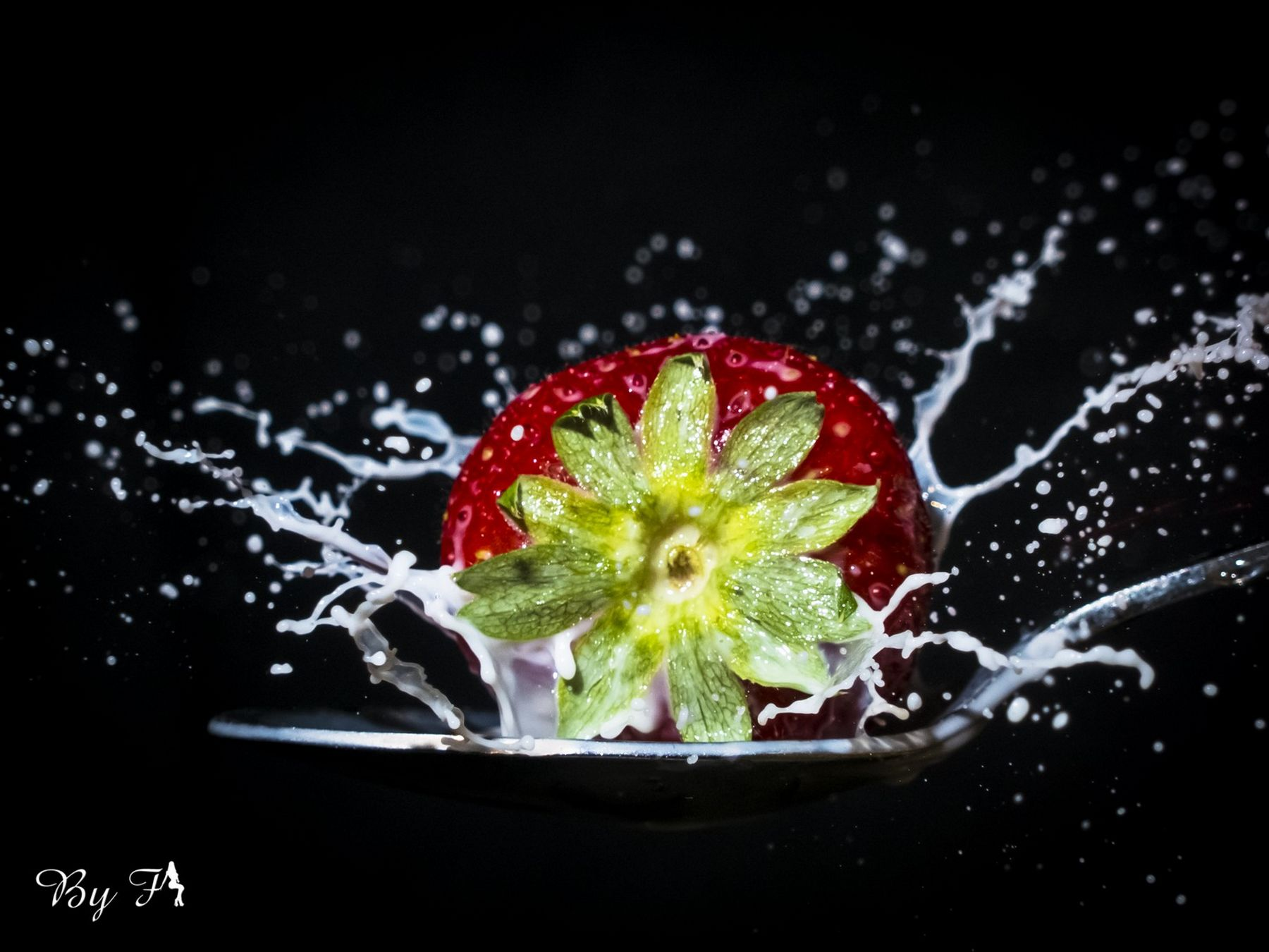 Tomates_(6)