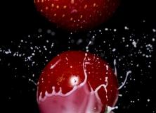 Tomates_(11)