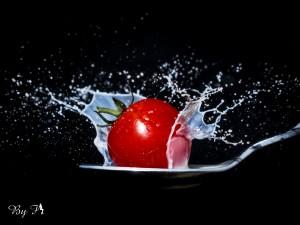 Tomates (20)